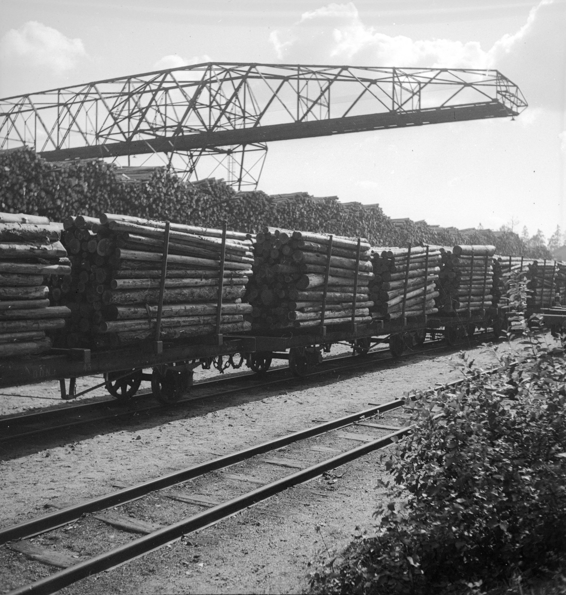 Vagnar lastade med massaved. Brokran i bakgrunden
