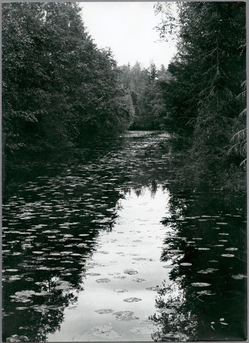 Hörks kanal mellan norra och södra Hörken.