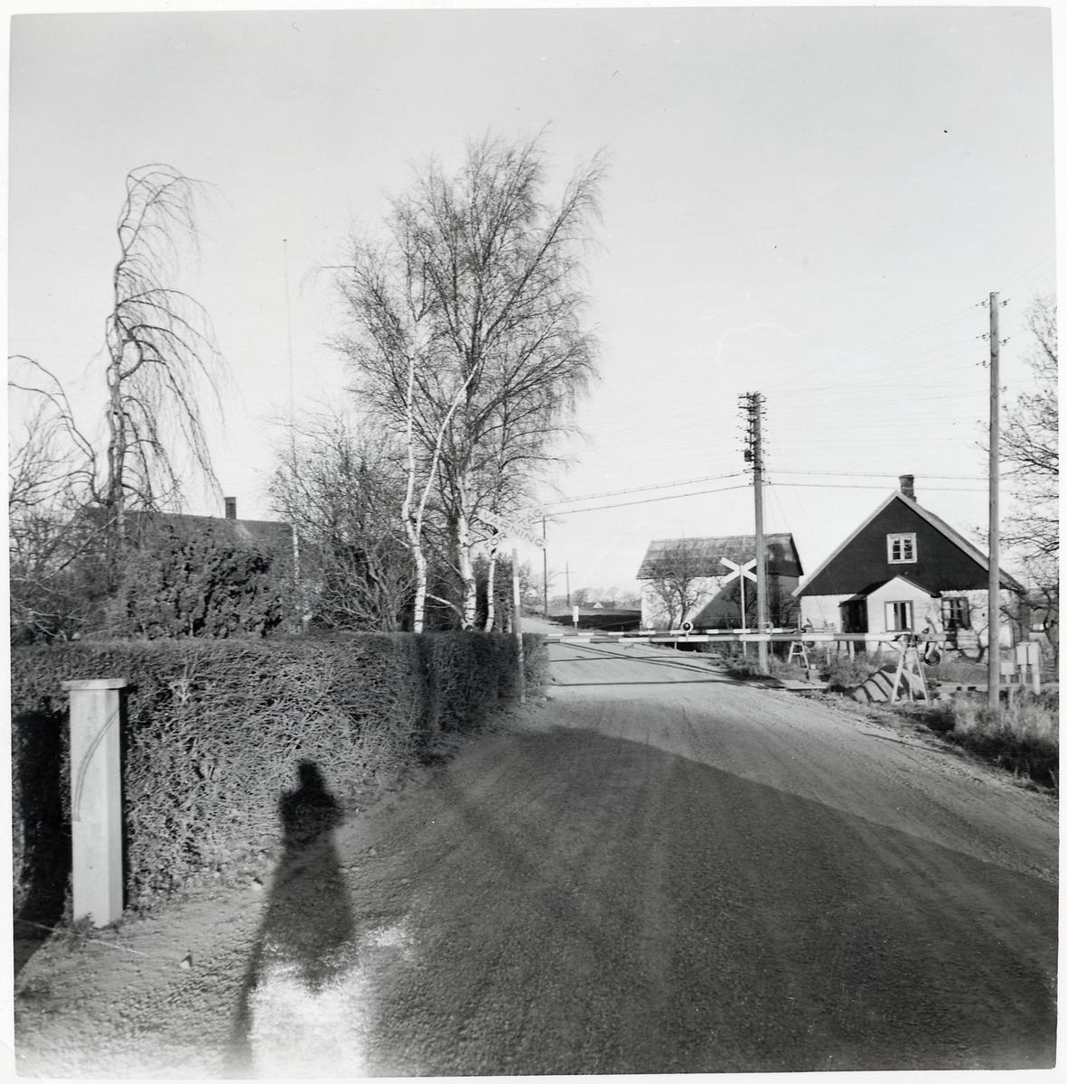 Järnvägsövergång i Ivarstorp på linjen mellan Rydsgård och Rynge.