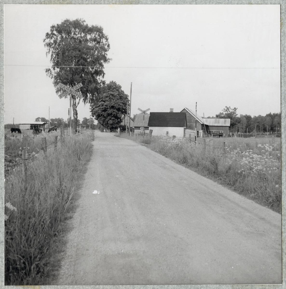 Norrbotten Callpojkar Malmls Fitta Enskede-rsta-Vantr