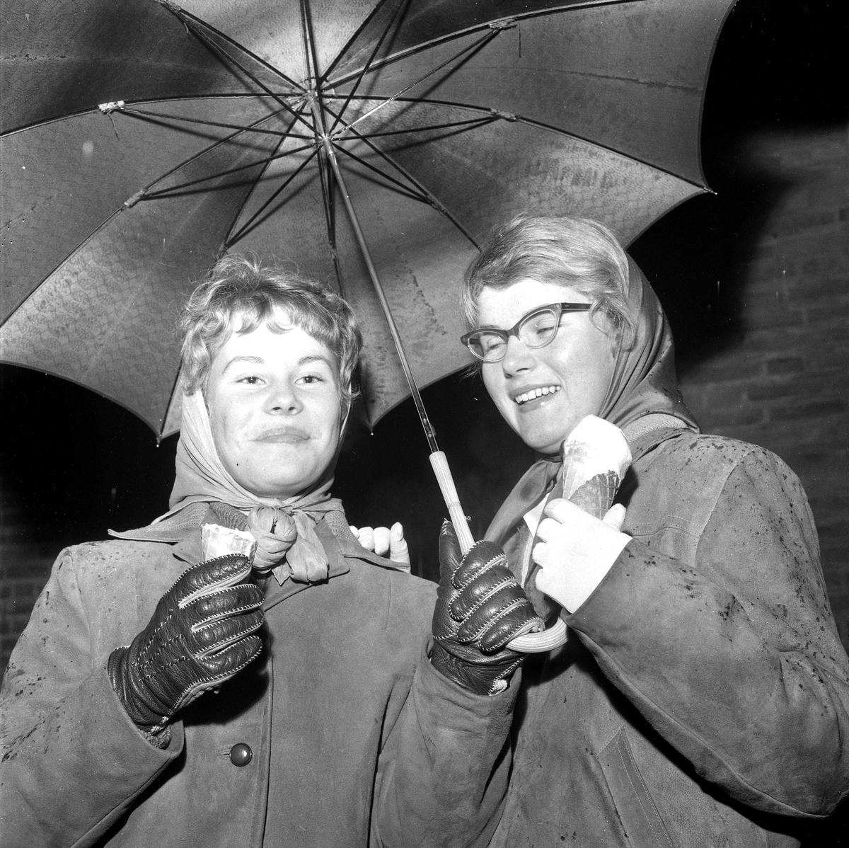 Glass i regnväder. 22 oktober 1958.