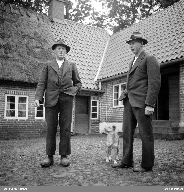 Miljöbilder  och porträtt av Nils och Fredrik Åkesson gåsupfödare i Veberöd, exteriör av bondgård, en hund på en gårdsplan, en flock gäss på en gårdsplan, porträtt av två män och en hund som står på en gårdsplan, en kvinna står i en dörröppning vid en tvådelad dörr, en man står vid en delad ladugårdsdörr, vy över en väg med hagar och stängsel av brädor.