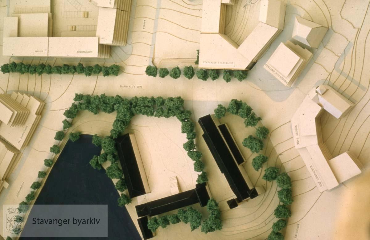 Breiavatnet, Kongsgård og Domkirken