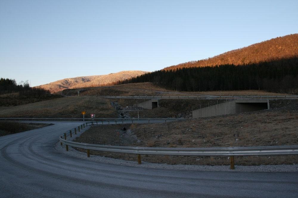 Leirfjord, Leira, Toventunnelen. Den nye veien til Mosjøen, RV 78, er ferdig. Påkjøringen fra Vatnveien opp på riksveien. Kuundergangen til gården Leireng, 64/8, og kulverten over Vatnveien ligger midt på og til høyre i bildet. Bak sees, i delvis sol, Leiråsen.