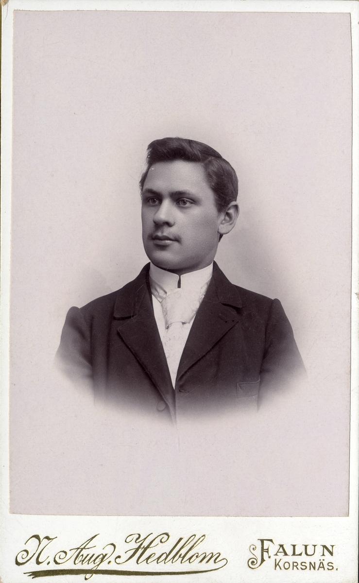 23278e71cc17 Porträttfoto av en man i mörk kavaj och stärkkrage med ljus slips.  Bröstbild, halvprofil