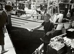 Oslo: Havna. Stemningsbilde. Fisk- og rekesalg. Juli 1978