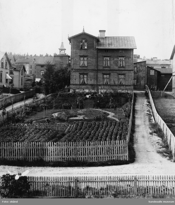 """""""Cederbladska huset"""" med stor trädgård. Familjen sitter på trappan. Bergsgatan 116 (nu 39) i nuvarande kvarteret Albäcken."""