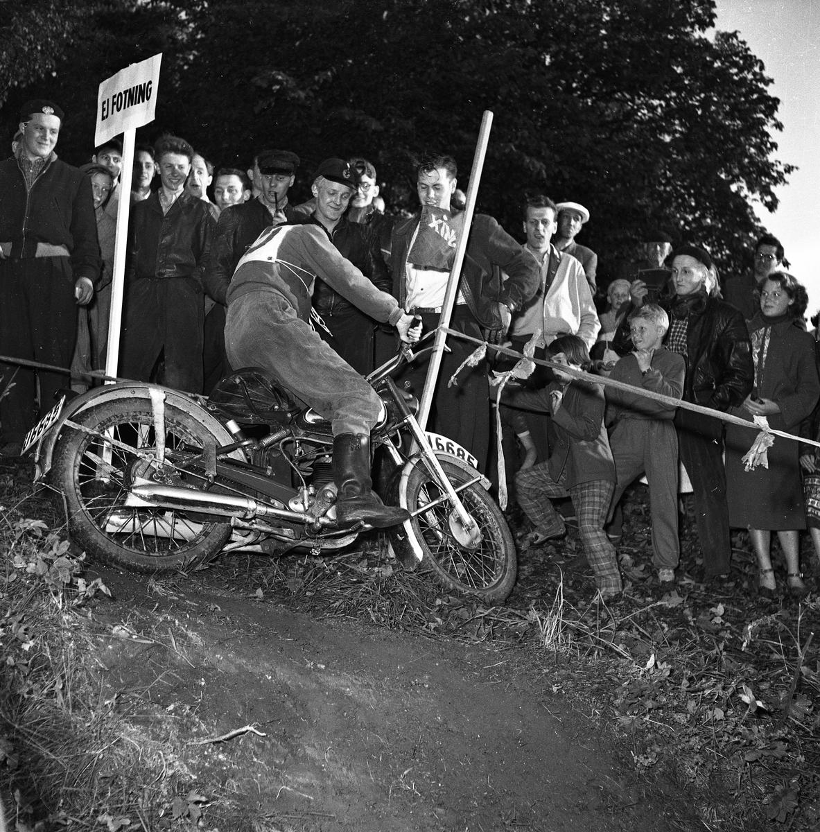 Arbogas Stjärnknutte Tävling i terrängkörning med motorcykel. Föraren kör alldeles intill publiken i backen.