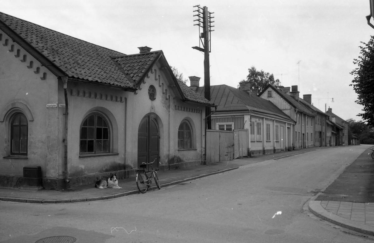 Fastigheter längs Trädgårdsgatan. Närmast i bild, det så kallade Spruthuset (stadens förråd ligger bakom huset). Hunden Roll ligger utanför porten. Möjligen vaktar han cykeln åt husse Elov Jonsson. Korsningen Trädgårdsgatan - Kapellgatan.