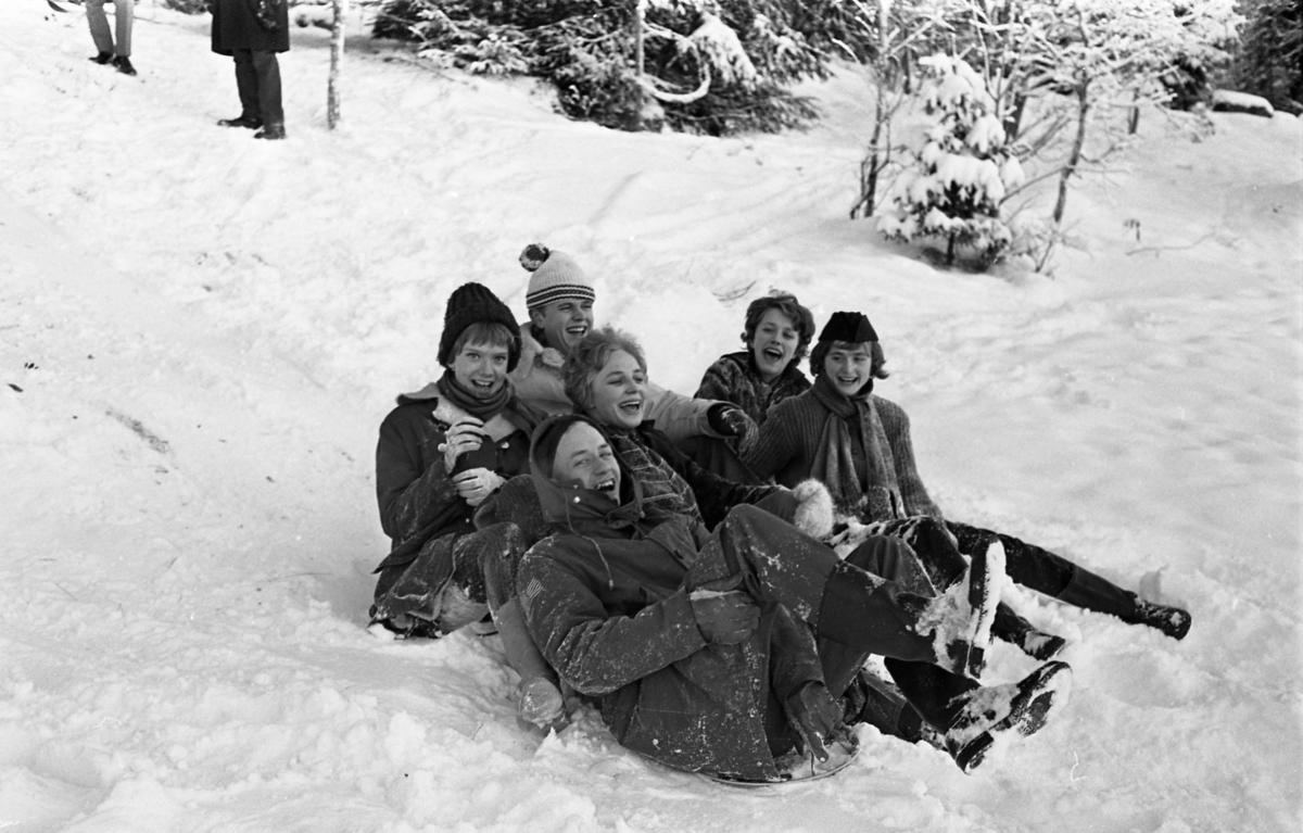 Träffpunkt Arboga. Sex ungdomar åker pulka i snön.