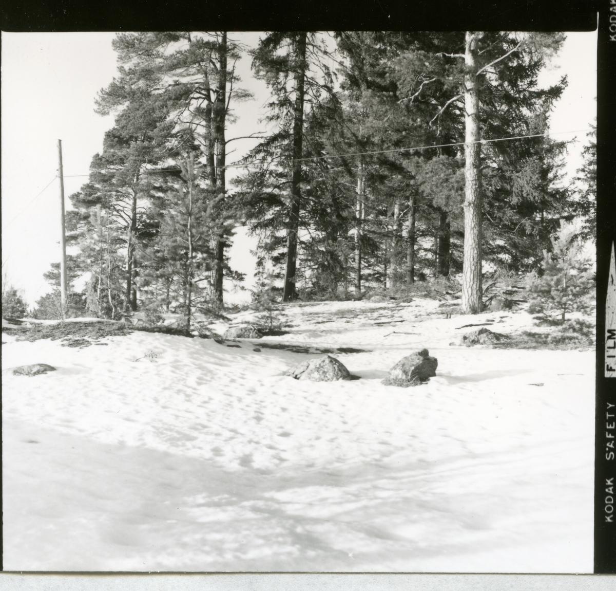 Kung Karl sn. RAÄ 554/71.