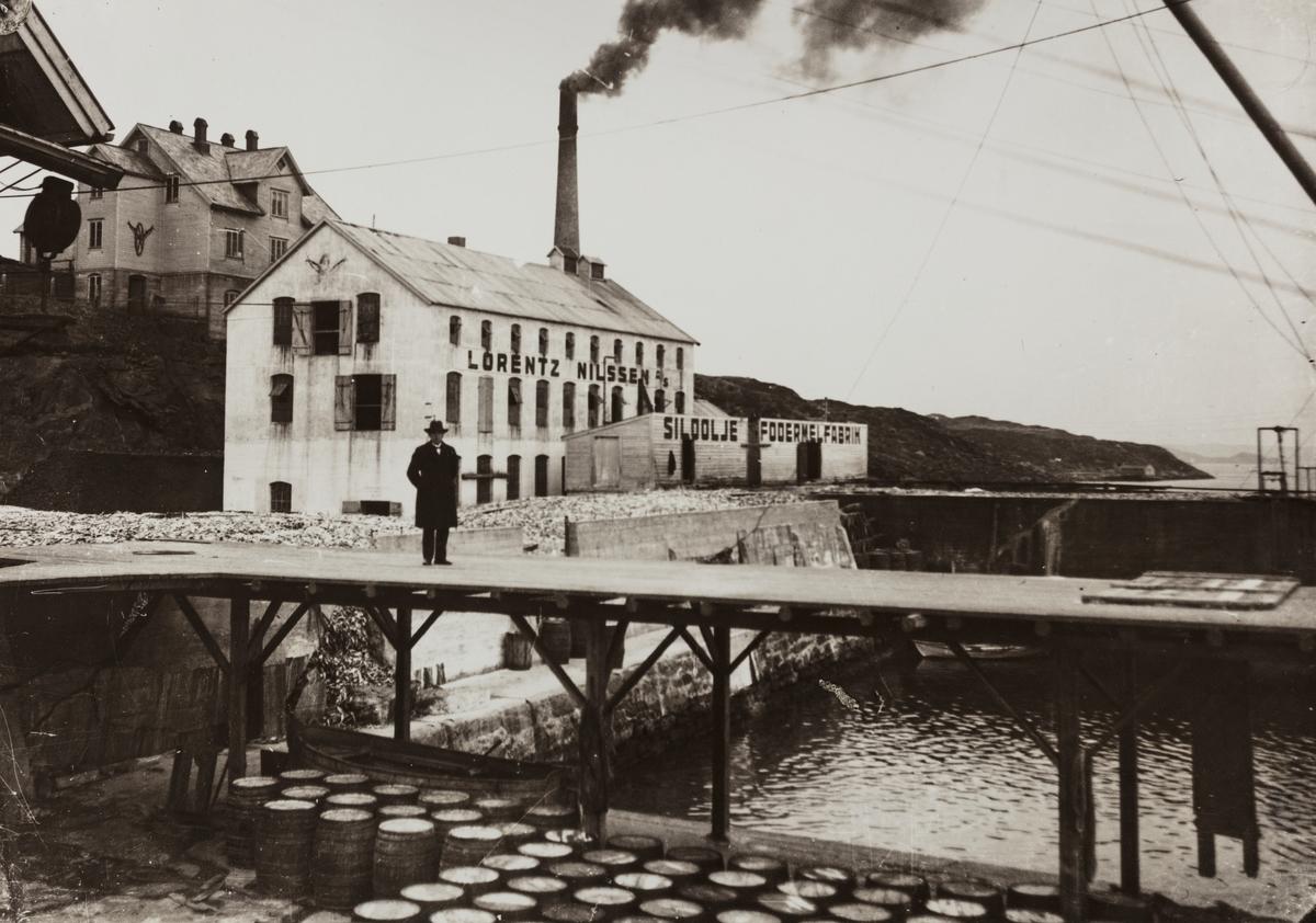 Parti fra Moksheim sett mot sydøst, ca. 1930.