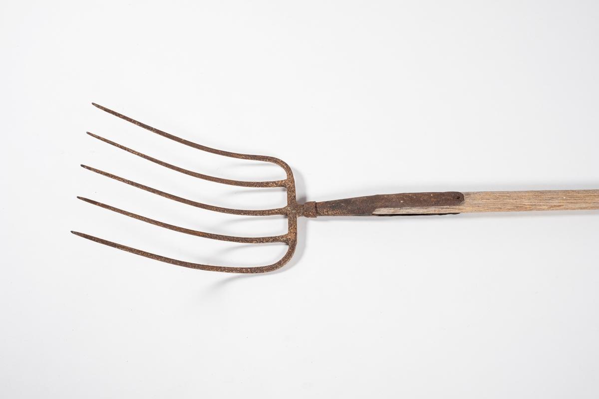 Avlangt redskap av jern og tre. Rektangulær gaffel med 5 tinner, disse er buet og spiss i enden. Rundt skaft uten håndtak. Gaffelen er naglet til treskaftet.