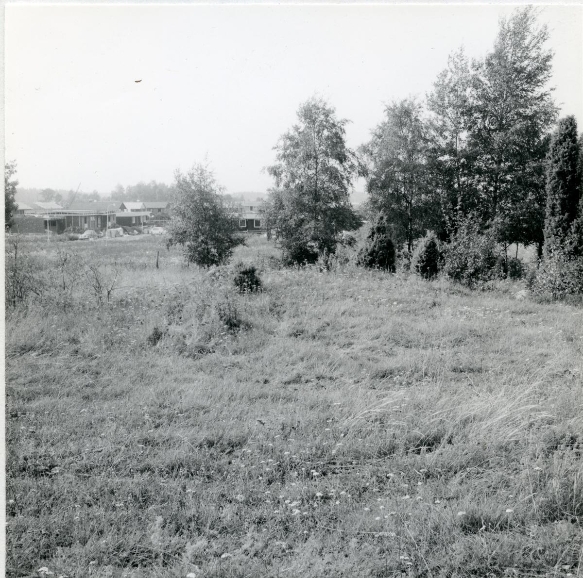 Fornlämning anläggning nr 84, Rönnby, Västerås, 1970.