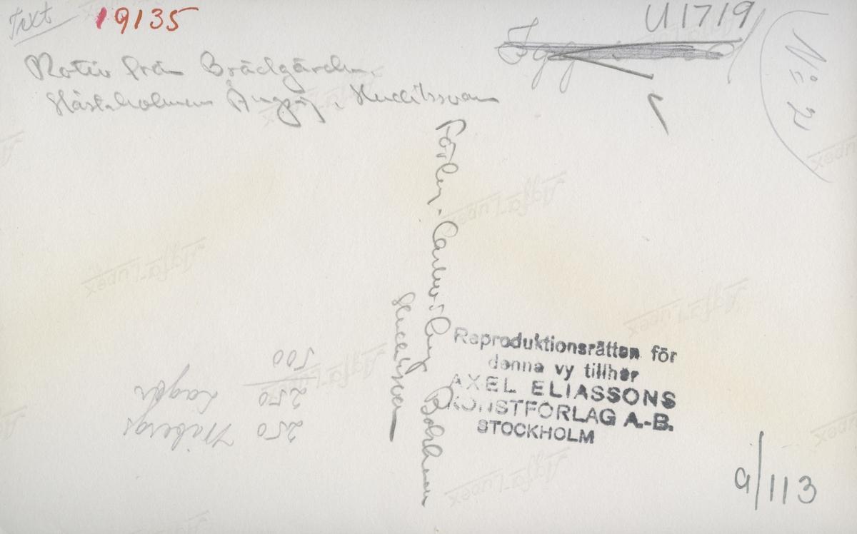 Travers vid Håstaholmens ångsåg i Hudiksvall.