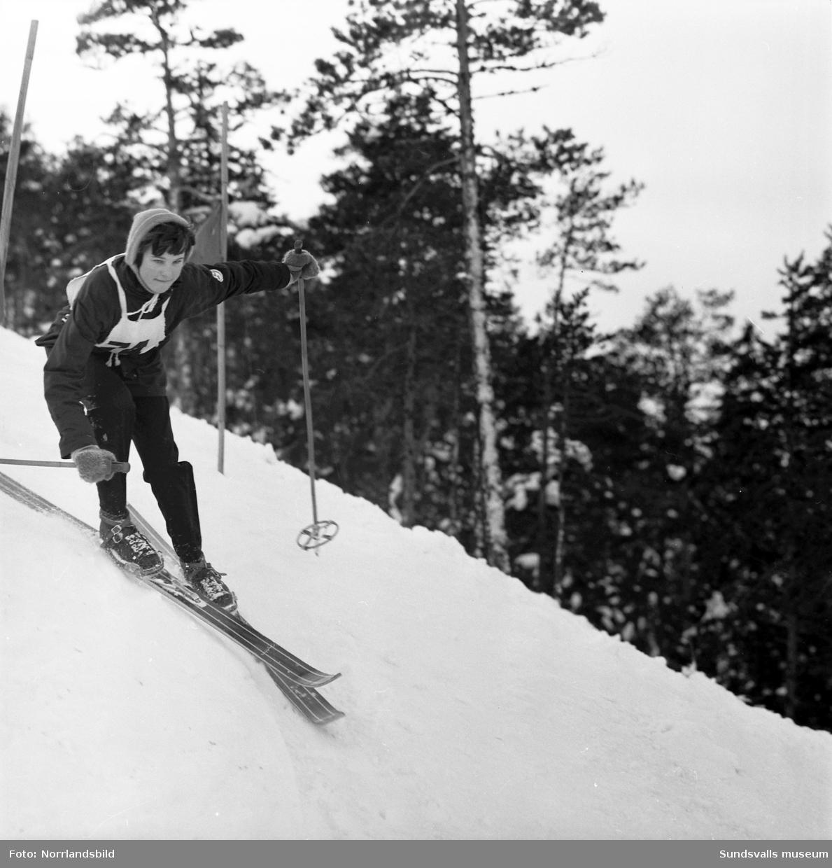 Juniorslalomtävling i Sundsvalls slalombacke, Södra berget.