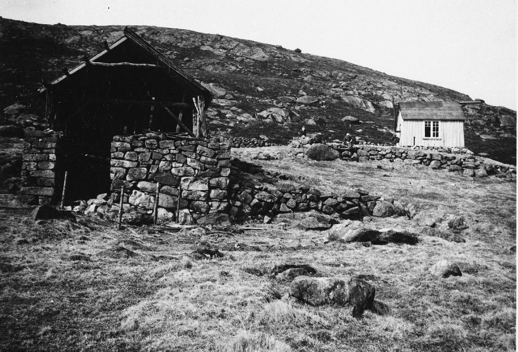 Frå Lauvlio i Gjesdal. Garden vart fråflytta ca 1920.