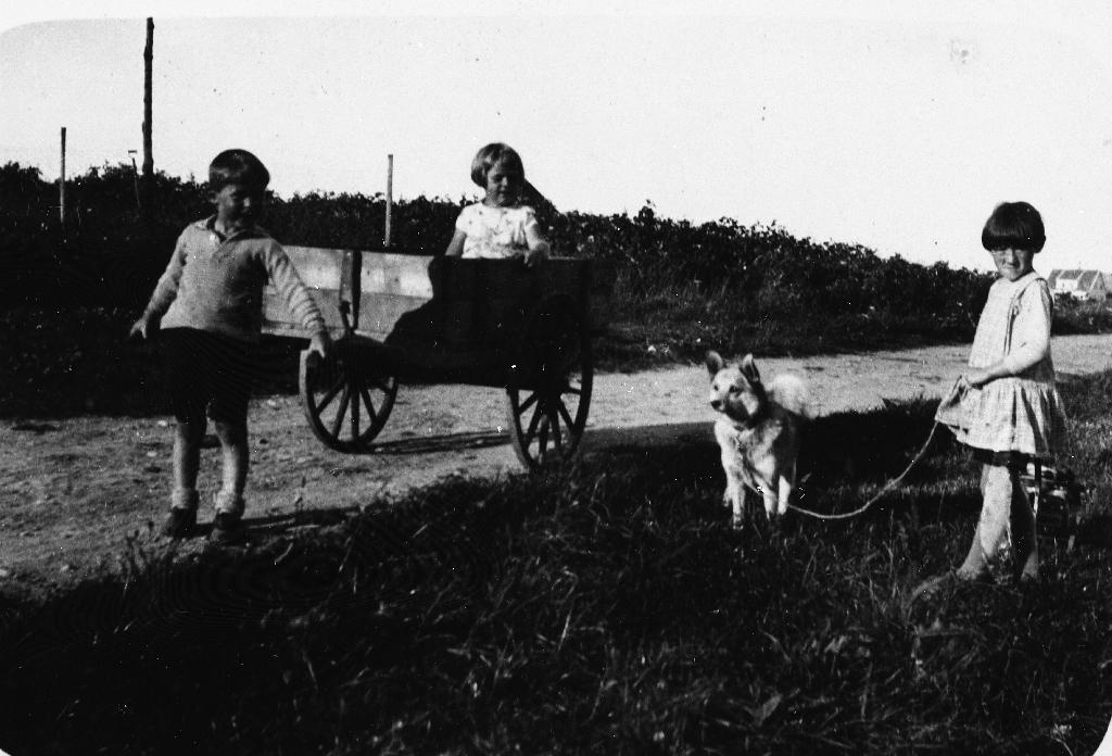 """Populær og solid handkjerre på Bryne i 1930-åra. I skjækene står Arvid Øglænd (1926 - ) og oppi sit Signy Håland (1927 - ) g. Time. Til høgre står Ina Berntsen (1925 - ) g. Aarrestad med hunden """"Flink"""" i band og sportsdokkevogn til høgre. Handkjerra var i stadig bruk tikl frakting av mjøl- og sukkersekker frå krambua på Bryne. Koffertar og store kolli til og frå Jernbanestasjonen. Oftast vart kjerra brukt til å frakta spønesekker """"Spønehuset"""" i Hetlandsgata. Ein sekk spøna kosta 25 øre."""