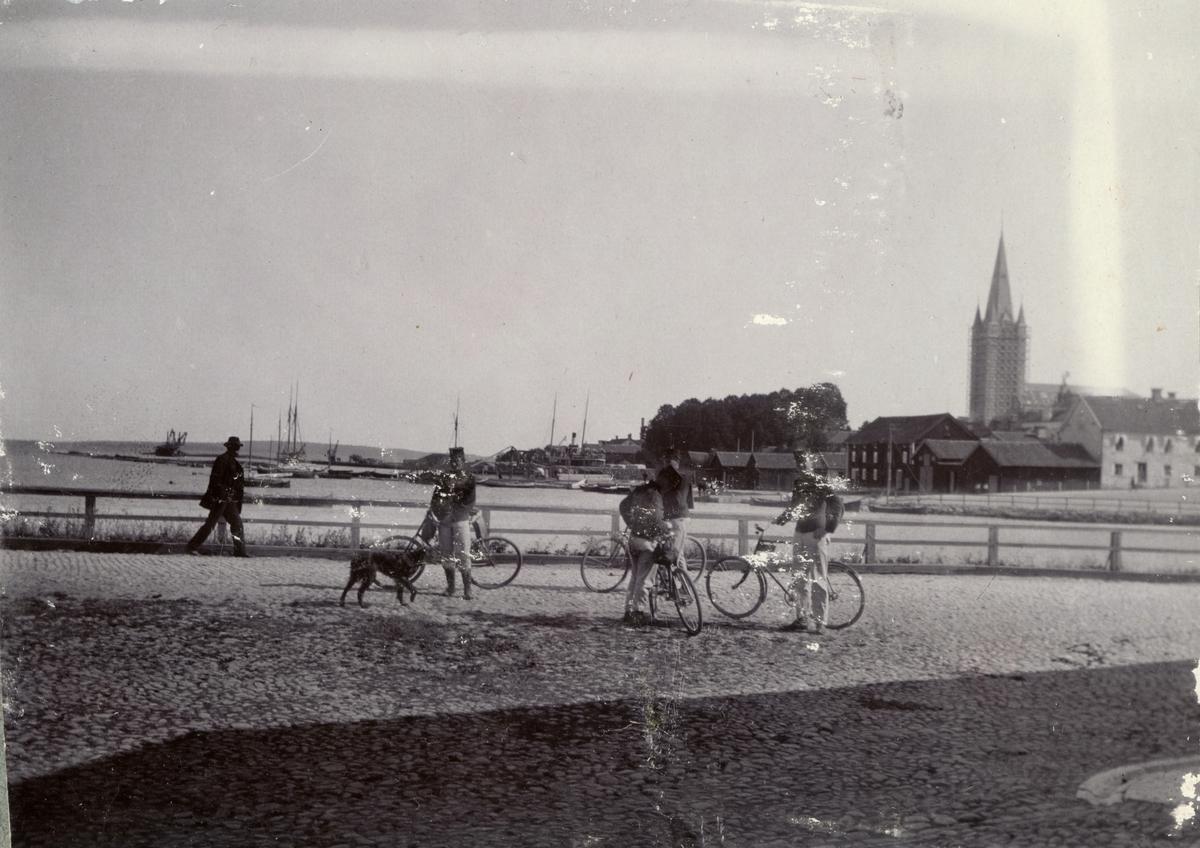 Soldater från Fortifikationen på cykeltur.
