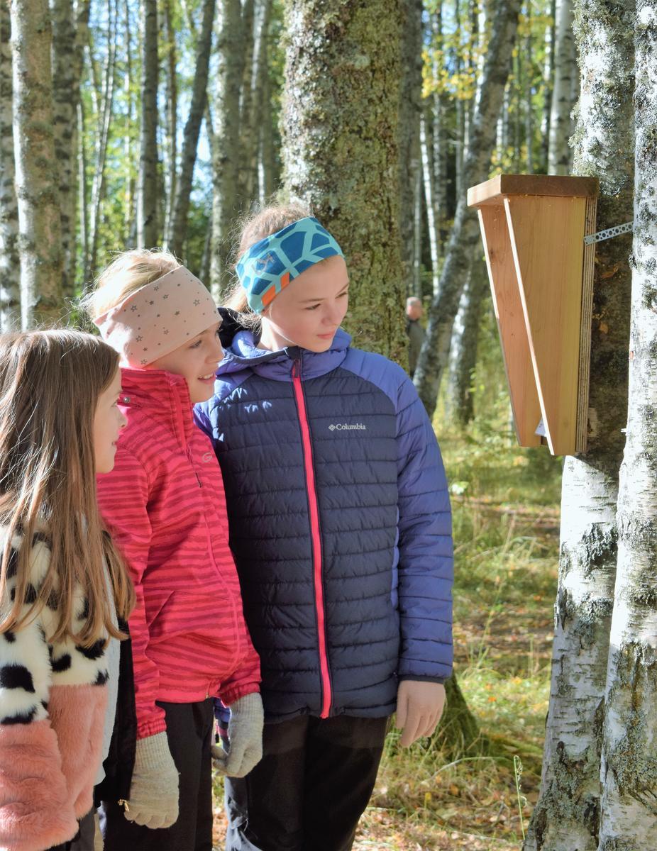 Foto av tre barn som leser natursti (Foto/Photo)