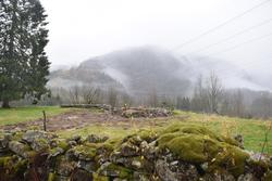 Træet, Austarheim, fotografering i samband med utarbeiding a