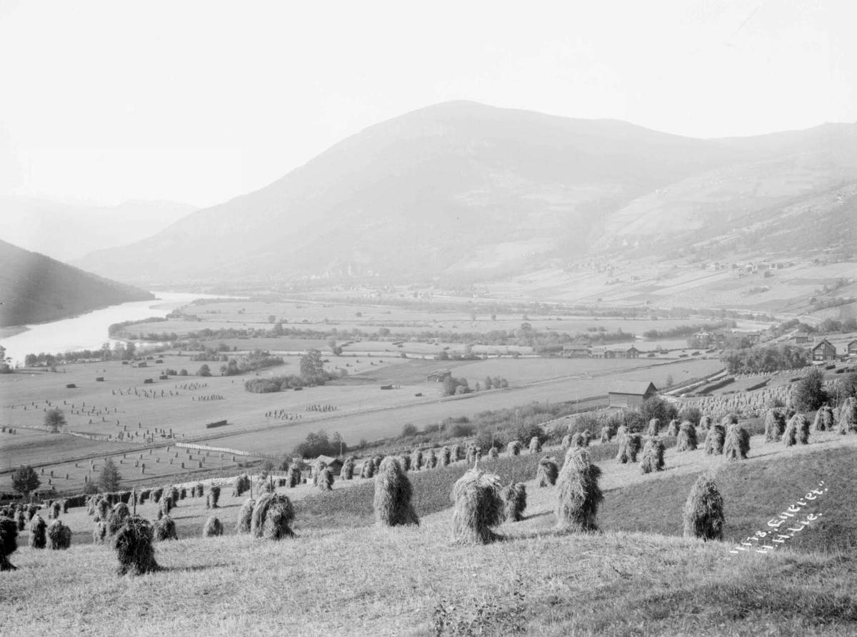 Nord-Fron 29.09.1908. Parti over Kvam fra Lillemorken. Elv, bebyggelse, kornband, fjellformasjoner.