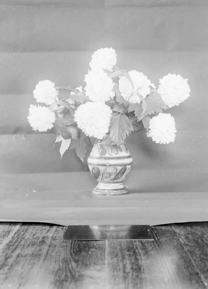 Blomster i vase. Sneballer.