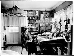 Kvinne, skrivebord, spisestue, blomster, interiør