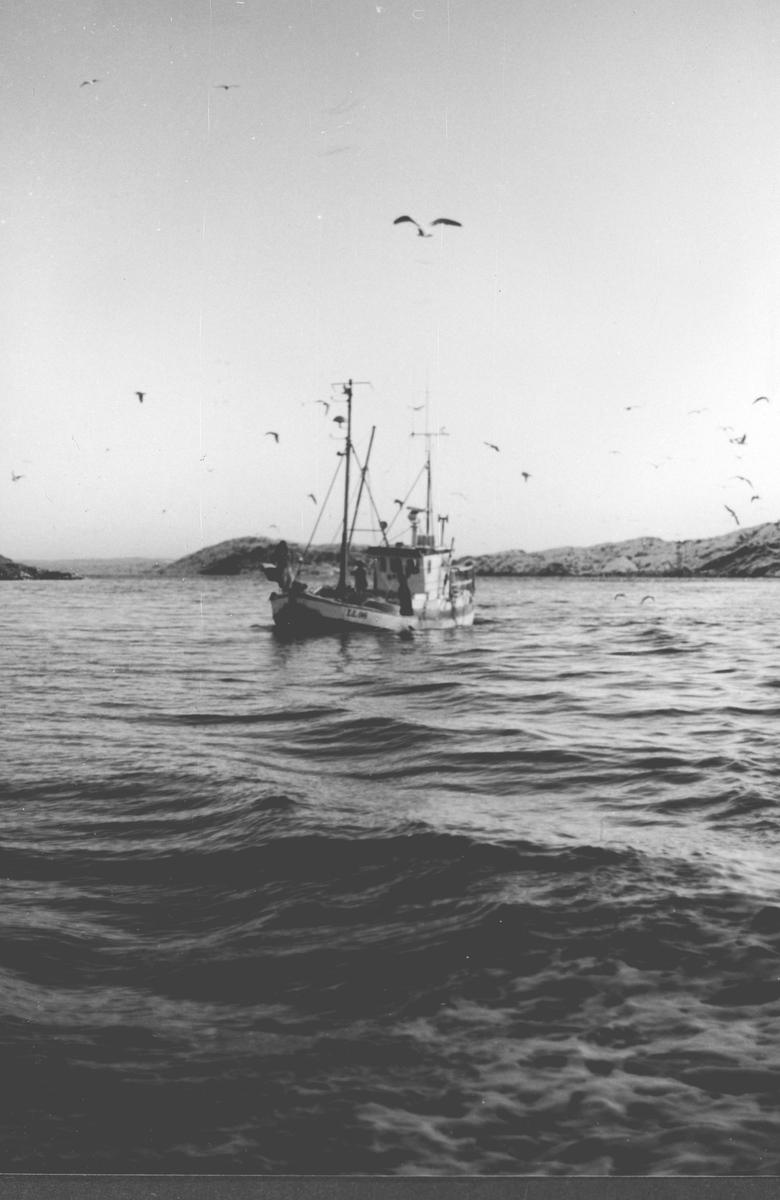 Fiskeskøyte på fisketur