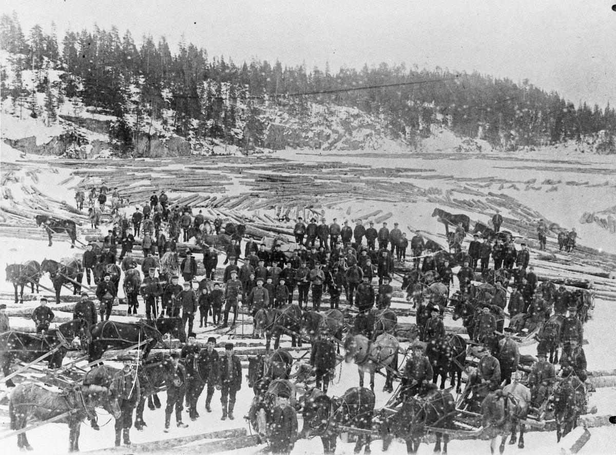 Tømmerdrift på Rausjø (Kjærs skog) ca 1919.