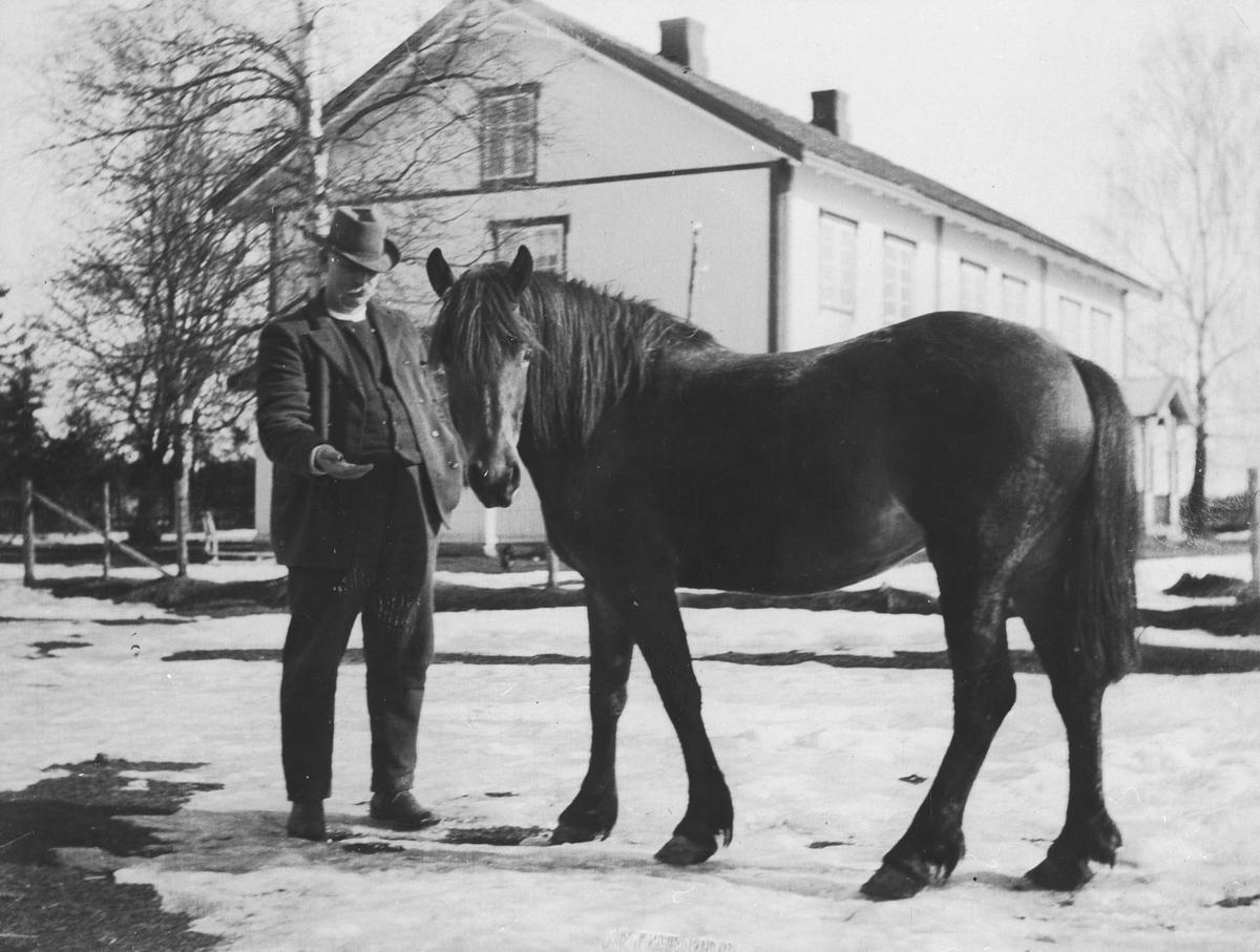 Ola Nordby med hest