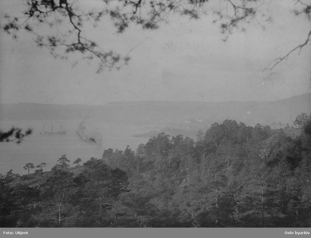 Utsikt fra Ekebergåsen mot Bispevika og Bjørvika. Skip for anker. Stadsingeniøren - Fotografier af Kristiania (albumtittel). Ca 1892, basert på øvrige daterte bilder i samme album.
