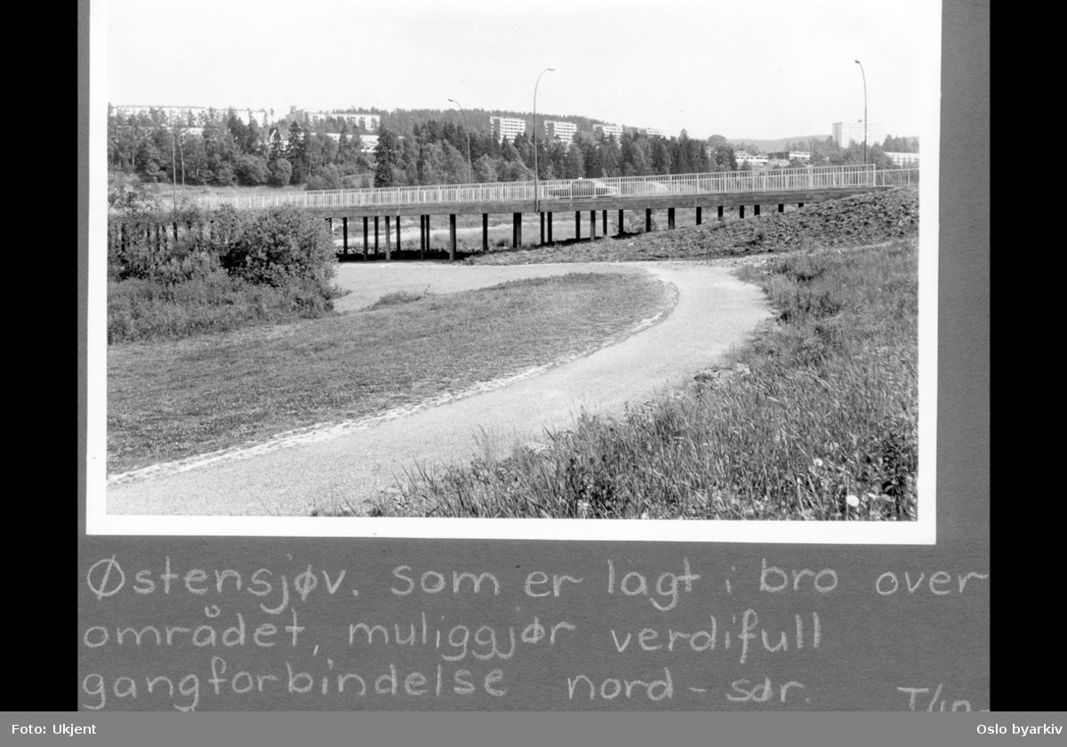 """Gangvei på Abildsø, ved Østensjøvannets sydende. Østensjøveien ble på begynnelsen av 60-tallet løftet opp på pæler for å unngå den årlige oversvømmelsen av veien akkurat her.Albumtittel: """"Turvei"""""""