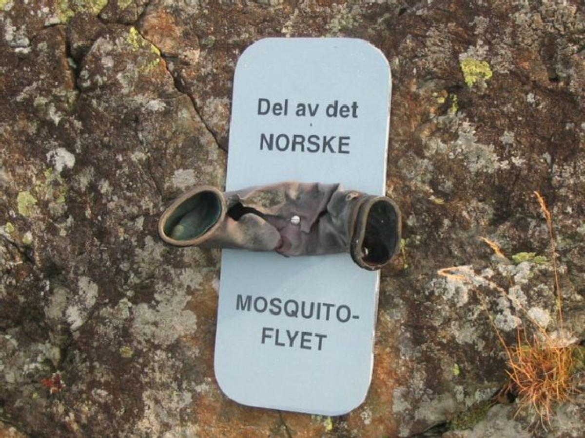 I sentrum er det ett flyvåpenmerke. På høgre side er det sett opp minneplate av de falne norske flygerne. Under den er det festet en del av flyet. På venstre side er det festet en plate med innskrift av de engelske flygerne som omkom 1 år senere