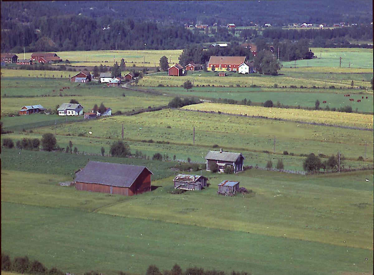 Kjernshagen (Gnr 53/39) på Langengene i Heradsbygda. Bygningene ble fjernet en gang etter 1970. Tuvløkken (Gnr 53/96) sees bak til venstre.