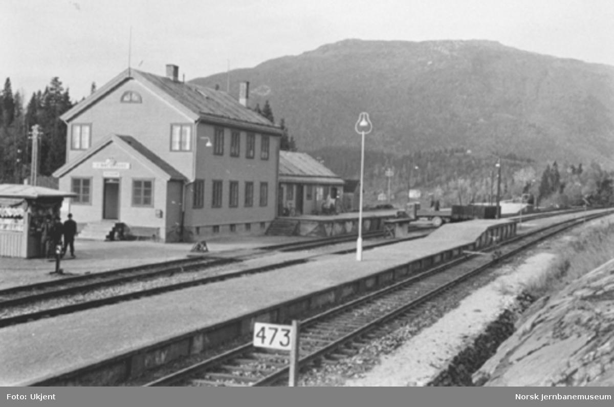 Finneidfjord stasjon