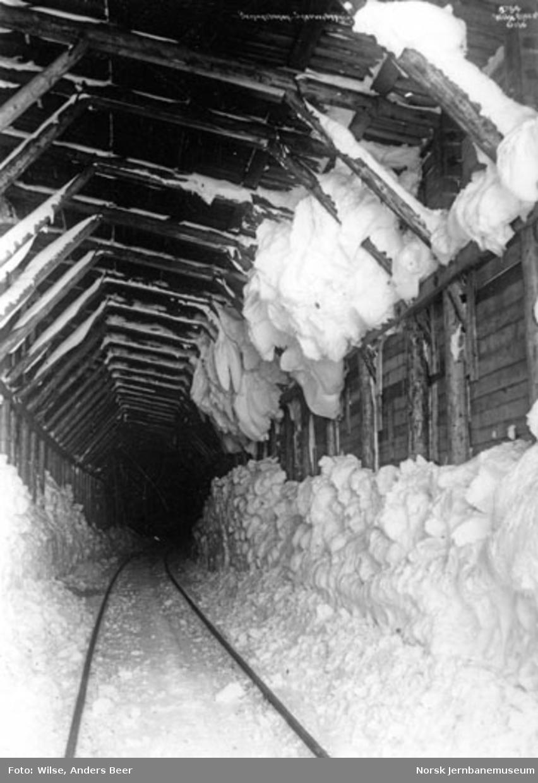 Snøoverbygg : spor og snø vinterstid