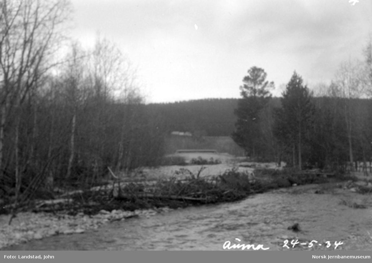 Trær i elveløpet etter flom i Auma elv