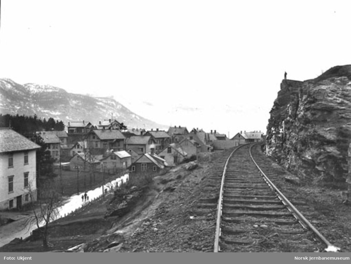 Bergensbanens trasé ut fra Voss