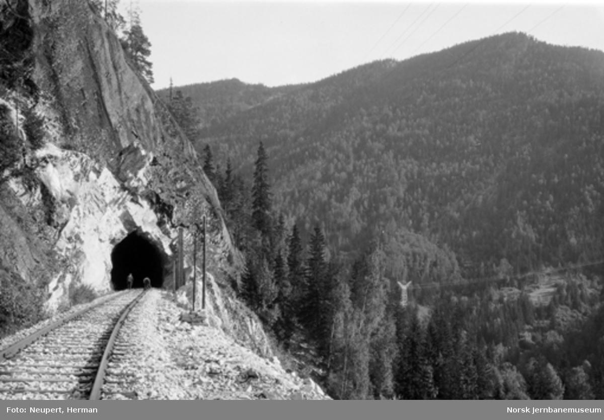 Tunnel på Numedalsbanen