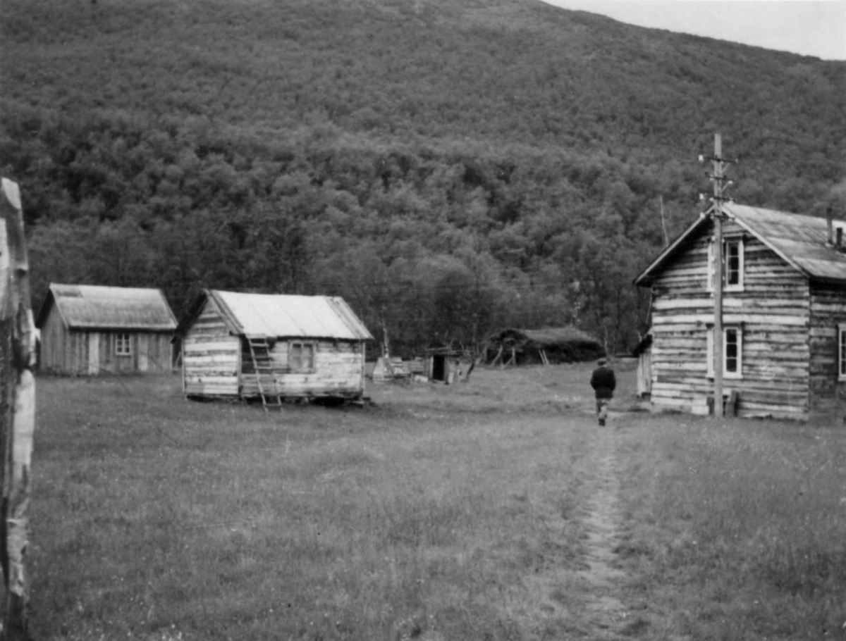 Alfred Henriksens gård med bolig, uthus og en gamme. Ruovtok 1952.