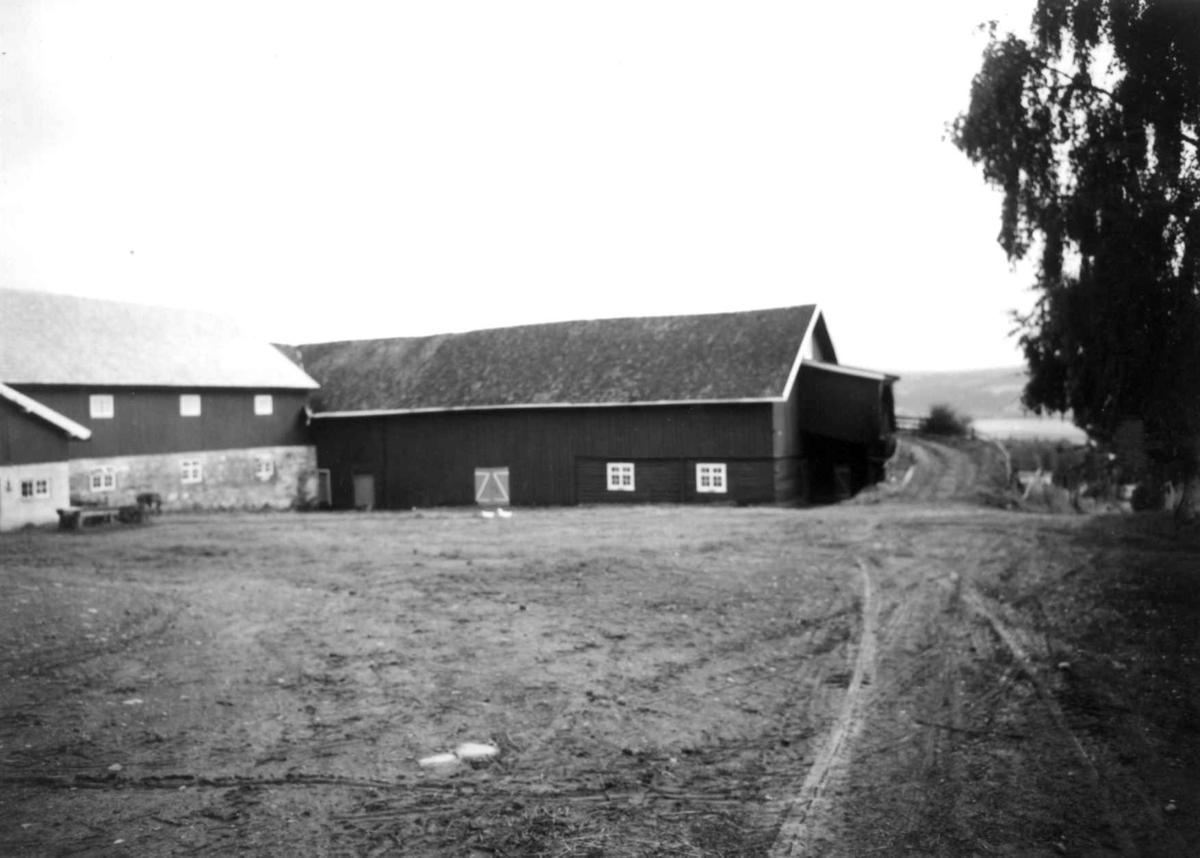 Helgeby, Nes, Ringsaker, Hedmark. Storgårdsundersøkelser ved dr. E. Engelstad 1957. Fjøs og stall.