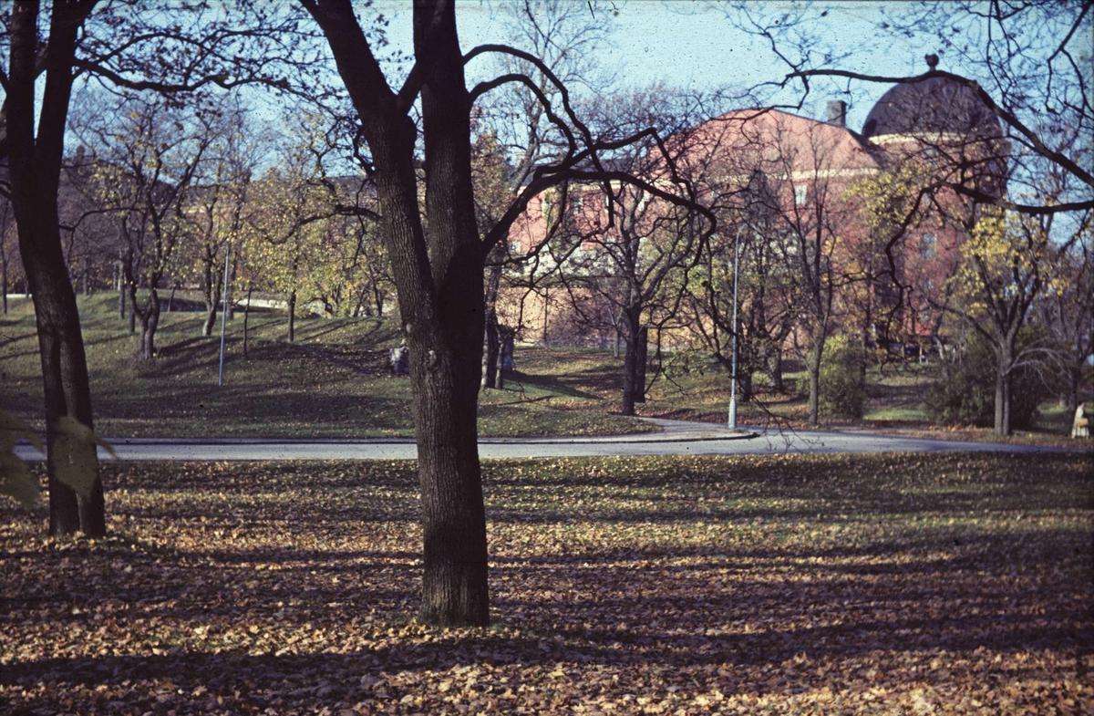 Park med Uppsala slott i bakgrunden