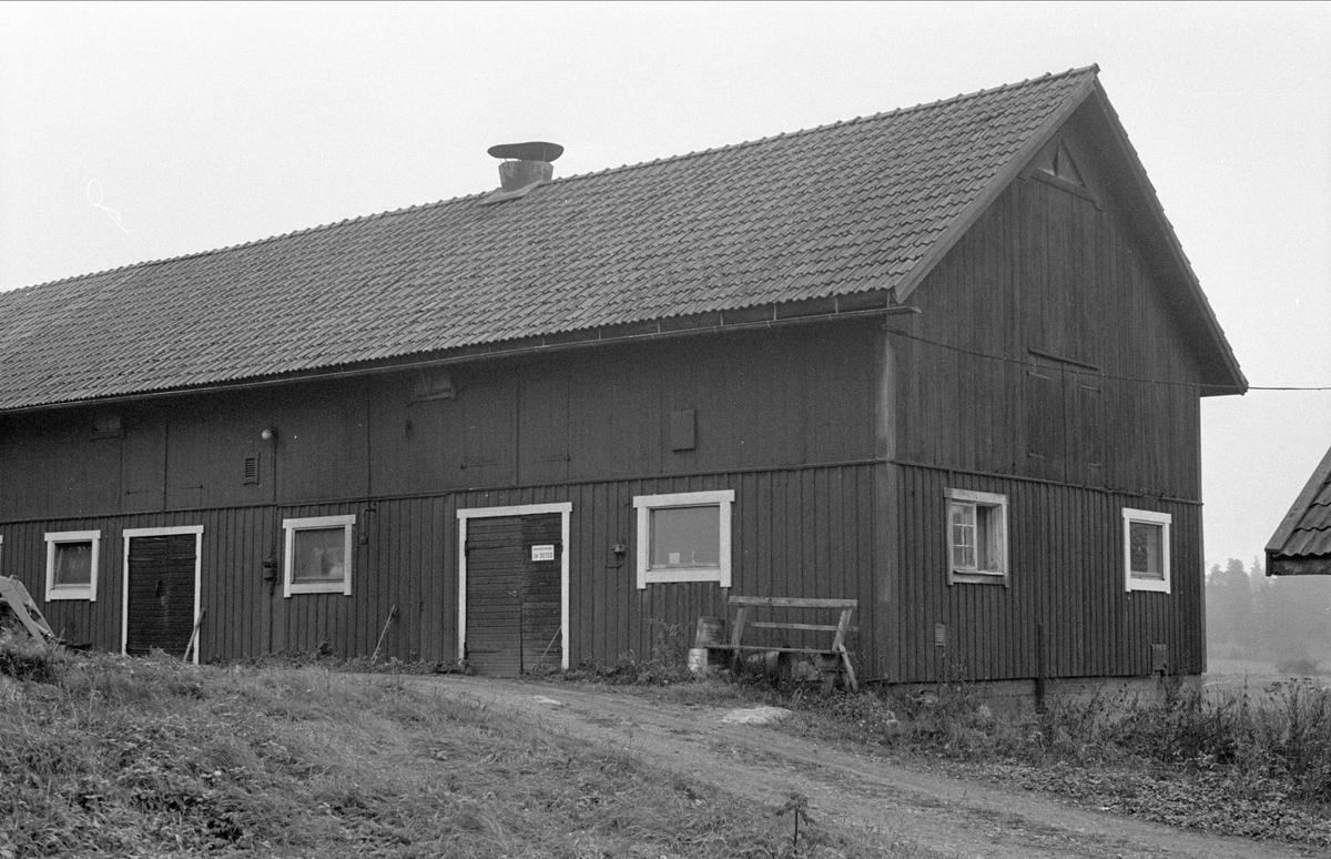 Ladugård, Hässle 4:3, Dalby socken, Uppland 1984