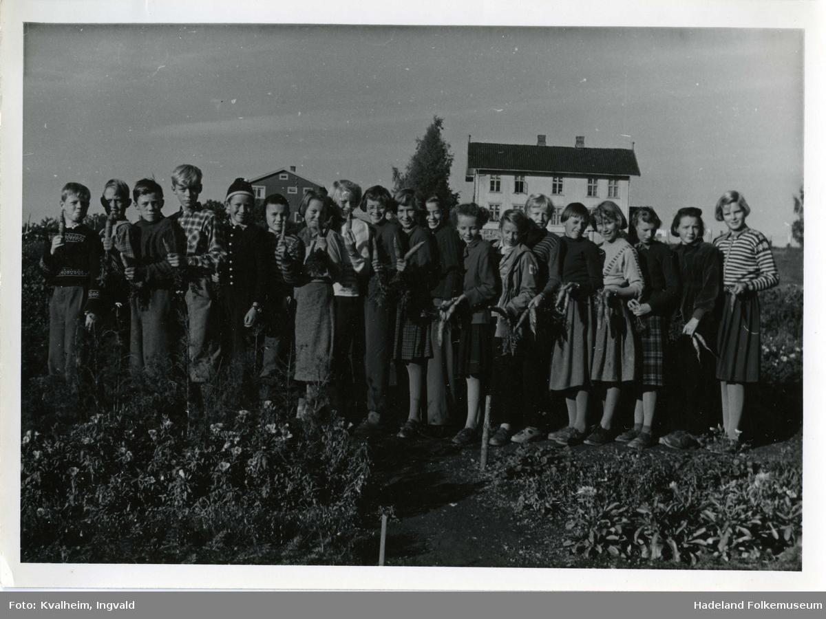 Skolehagen Leikvoll skole