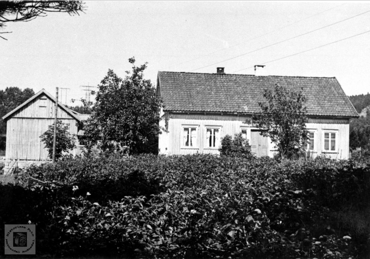 """""""Monen"""" Hesså, Bjellland"""