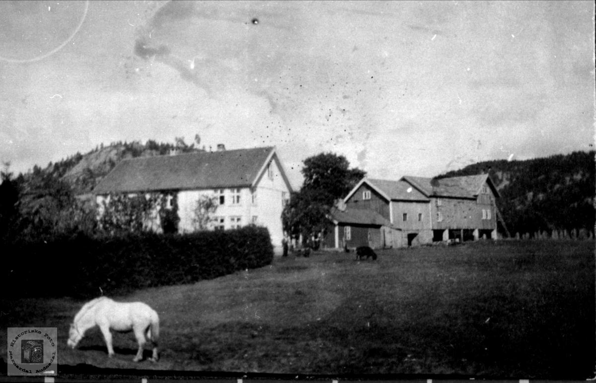 Gård på Trygsland, Bjelland