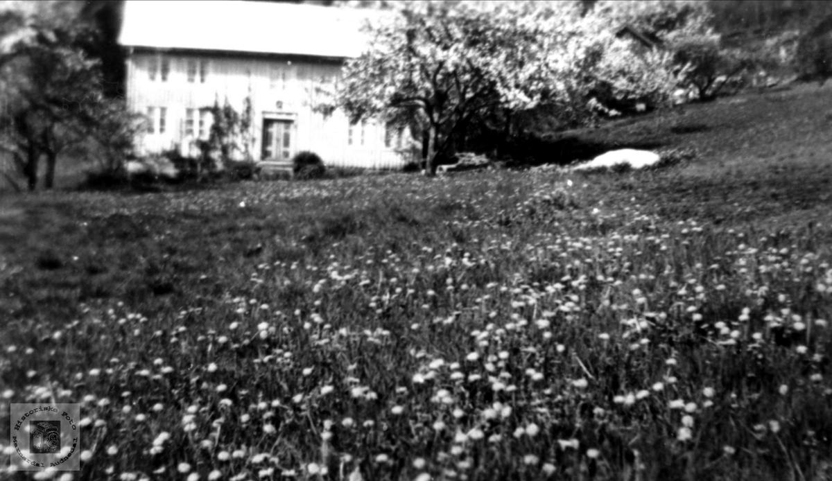 """""""Der nede"""", Øvre Homme, Bjelland"""
