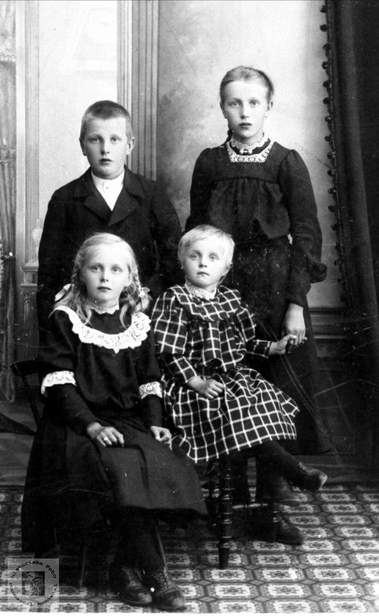 Gruppebilde Sangesland, Liestøl, Fuglestveit.