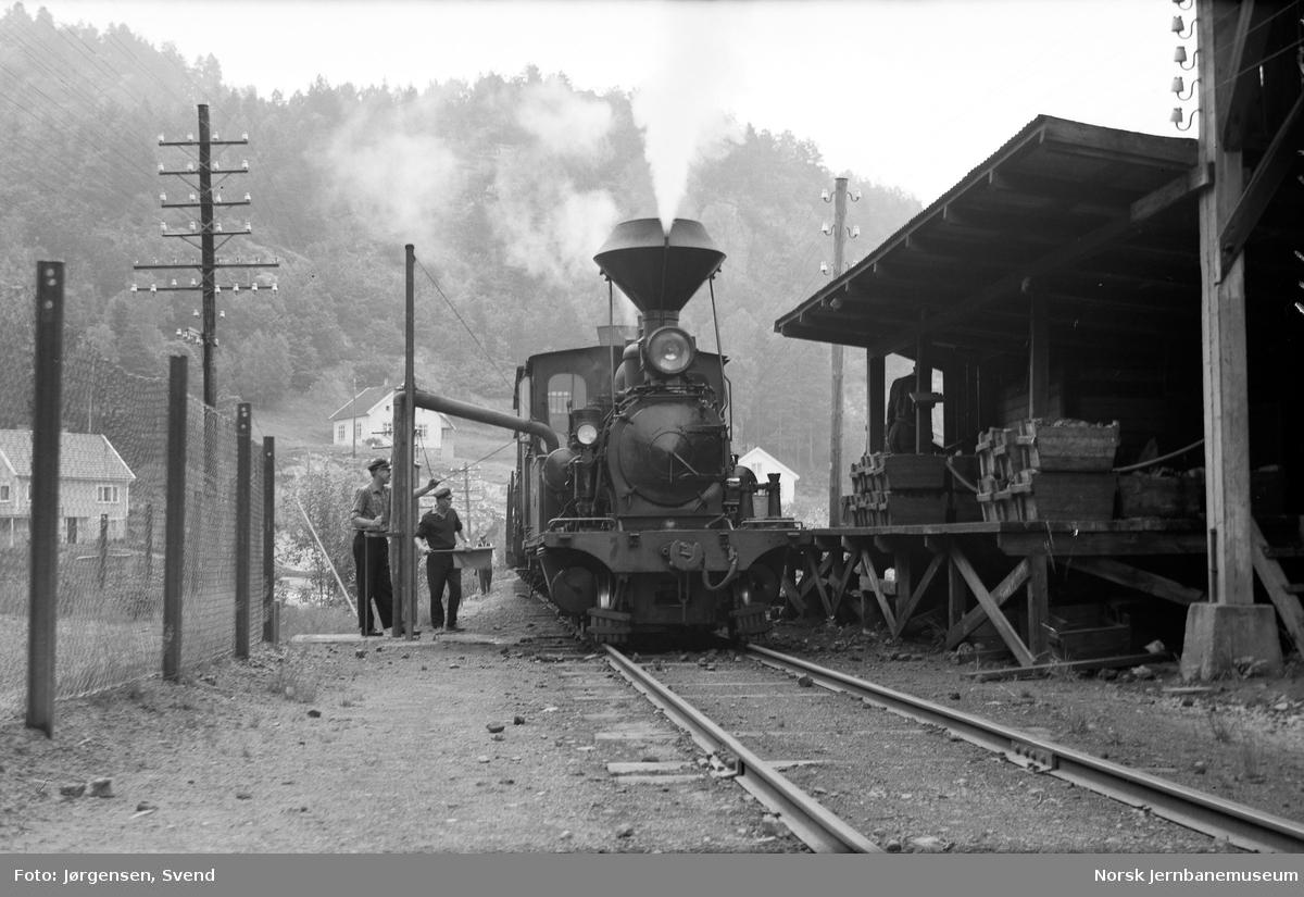 Damplokomotiv nr. 2 med godstog 5661 tar vann på Hægeland stasjon